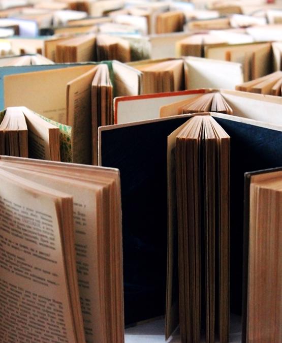 İngiliz Dili ve Edebiyatı